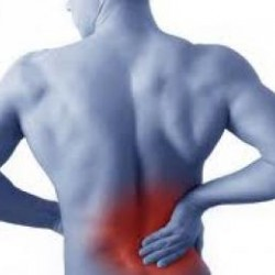 Lower Back Pain Tips